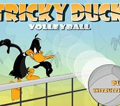 Free game - Tricky Duck Volleyball